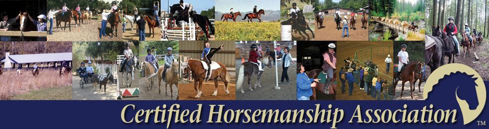 Learning Horse Basics