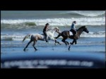 Free Riding Horses At The Beach