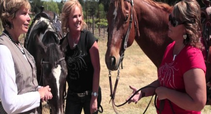 A Match Made In Heaven – Women Wine and Equine