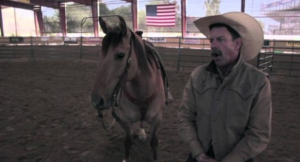 THOMAS B SAUNDER'S TALKS MOVIE HORSES & HORSEMANSHIP