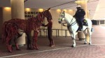 The War Horse Meets The Police Horse