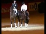 Looking at Western Dressage & English Dressage